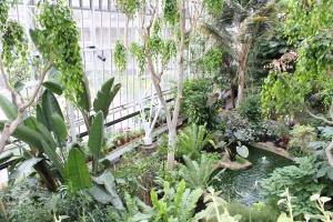 serre tropicale Barbican