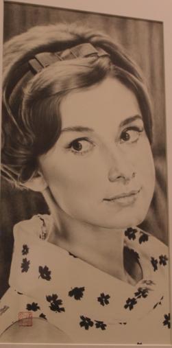 Audrey Hepburn - Namio Sakamoto